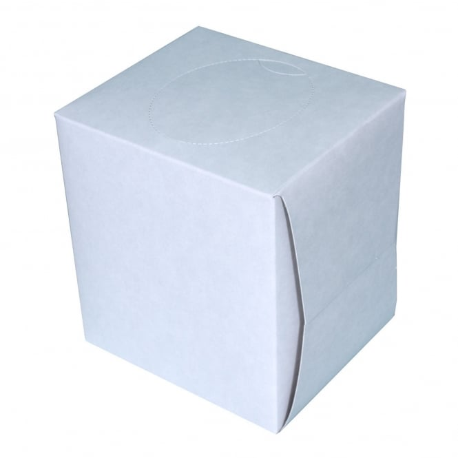 Boutique cube tissues 2 ply (pk 24)